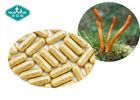 Immunity Respiratory Herbal Supplements / Cordyceps Militaris Capsule For Energy