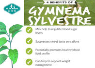Gymnema Sylvestre Extract Blood Sugar Supplements With 25% Gymnemic Acid